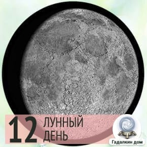 Лунный календарь садовода на 12 лунный день