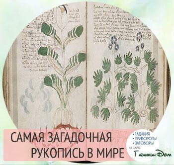 Рукопись Войнича: самый загадочный документ в истории