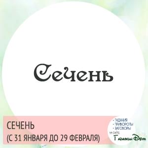 Сечень (с 31 января по 29 февраля)