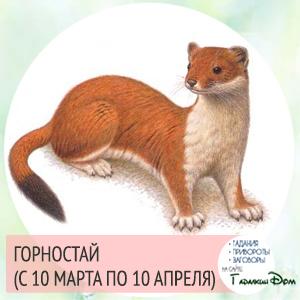 Горностай (с 10 марта по 10 апреля)