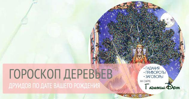 Гороскоп деревьев друидов по дате вашего рождения