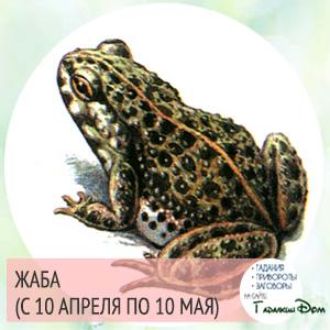 Жаба (с 10 апреля по 10 мая)