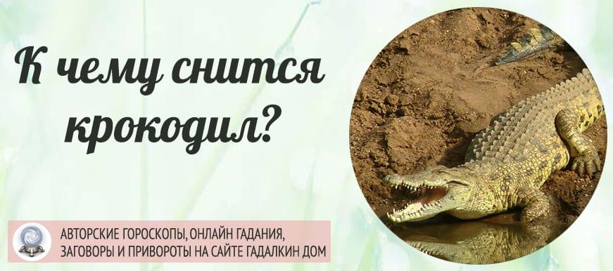 Онлайн-сонник: крокодил во сне символизирует опасности и конфликты.
