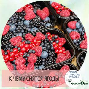 к чему снятся ягоды малины или клубники