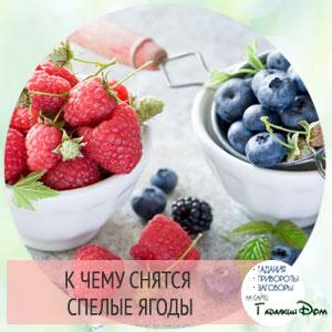 к чему снятся ягоды земляники или смородины