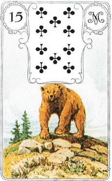 изображение карты ленорман медведь