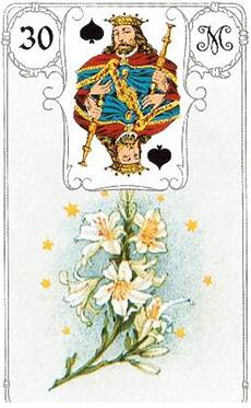 изображение карты ленорман лилии король пик