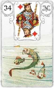 изображение карты ленорман рыбы король бубен