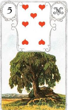 карта дерево