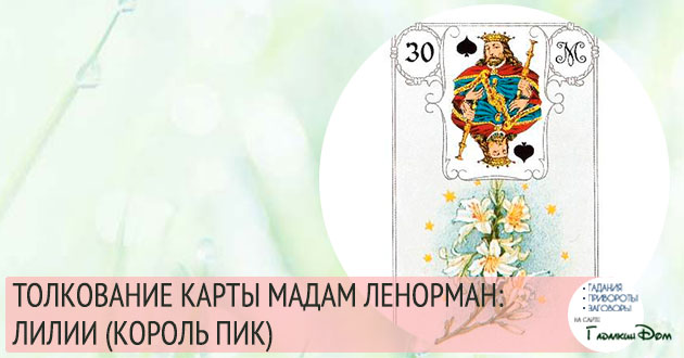 значение карты мадам ленорман лилии король пик