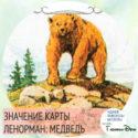 значение карты ленорман медведь