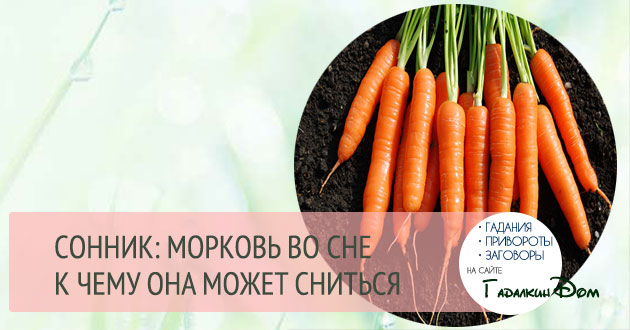 к чему снится морковь