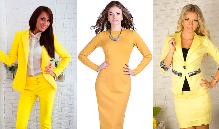 что одеть на новый год желтой собаки?