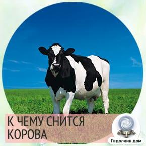 Если приснилась раскормленная корова, то многое в жизни вам достаётся без особого труда