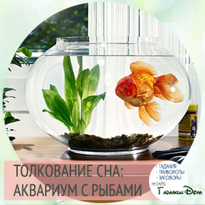 сонник аквариум с рыбами