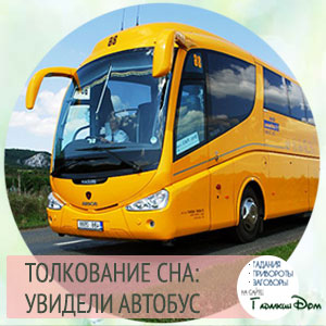 видеть автобус во сне