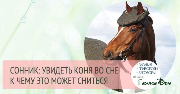 к чему снится конь