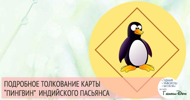 Символ «Пингвин» в гадании Индийский Пасьянс