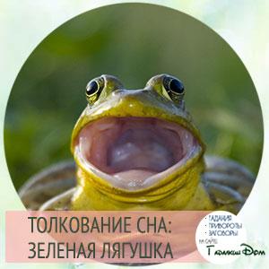 сонник лягушки