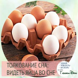 видеть куриные яйца во сне