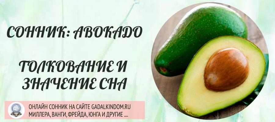 сонник авокадо