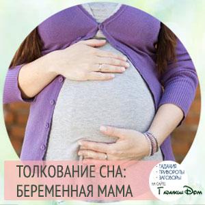 видеть во сне беременную маму свою