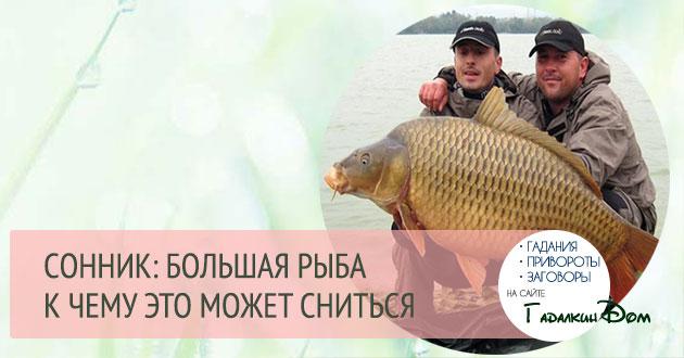 к чему снится большая рыба женщине