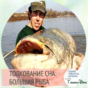 сонник большая рыба во сне