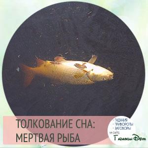 видеть мертвую рыбу во сне