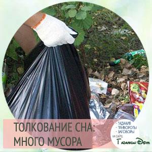 сонник убирать мусор во сне