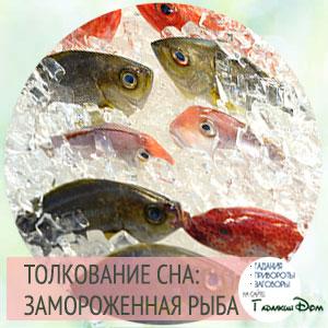 сонник замороженная рыба