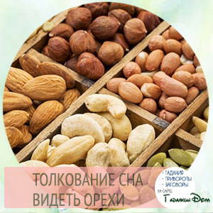 сонник орехи во сне