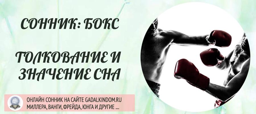 Сонник бокс