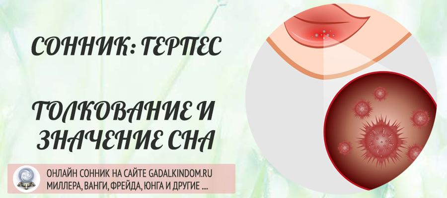 Сонник Герпес