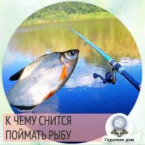 к чему снится пойманная рыба мужчине