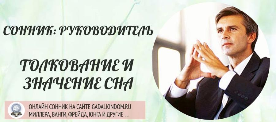 Сонник руководитель
