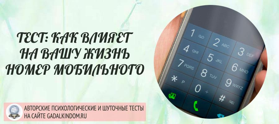 Тест по номеру телефона