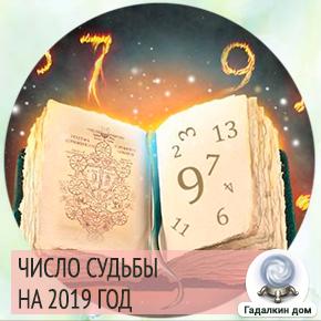 число судьбы по дате рождения на 2019 год