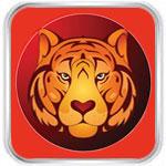 Тигр 2019