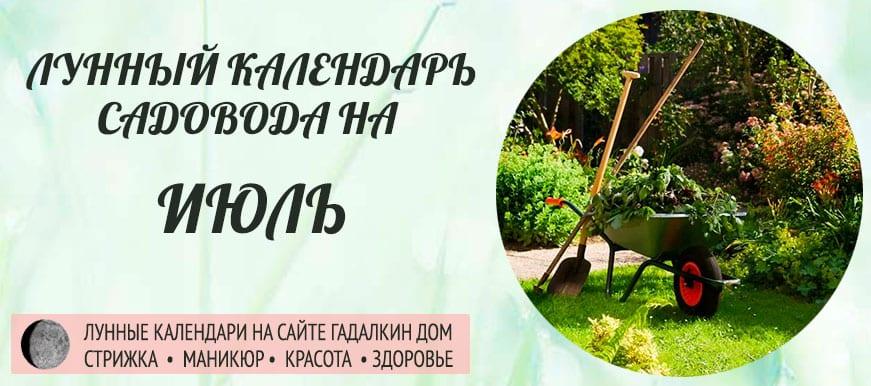 Лунный календарь ухода за растениями для садовода и огородника в июле 2019 года - оракул благоприятных дней.