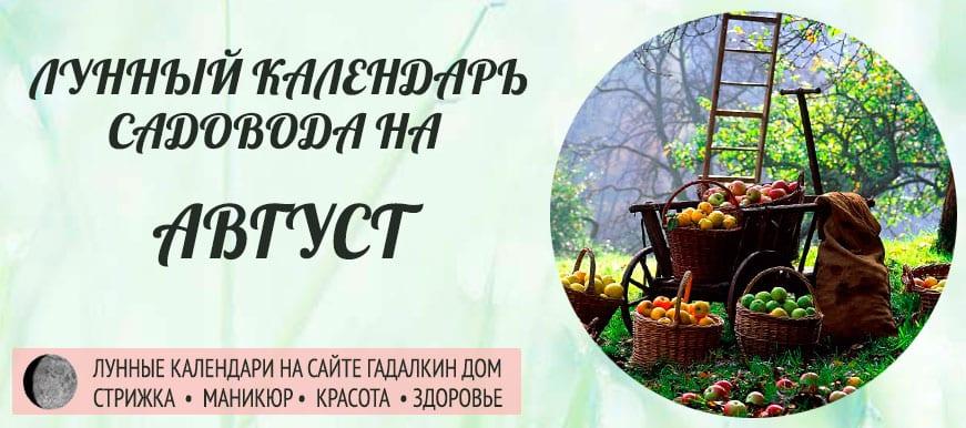 Лунный календарь ухода за растениями для садовода и огородника в августе 2019 года - оракул благоприятных дней.