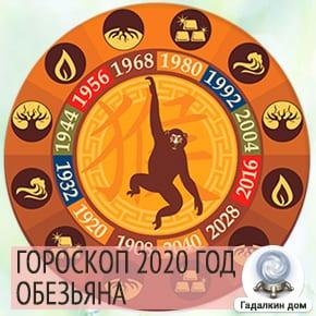 Гороскоп Обезьяны 2020