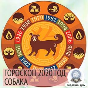 Гороскоп Собаки 2020