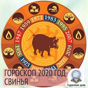 Гороскоп Свинья (Кабан) 2020