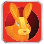 Кролик (Кот) 2020
