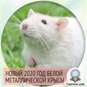 Год Белой мателлической крысы
