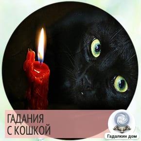 Гадания с кошкой на любовь