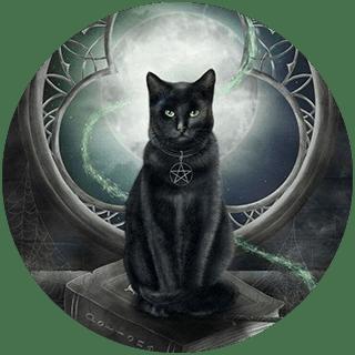 Гадание на желание с кошкой