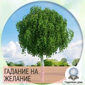 Гадание в Васильев день