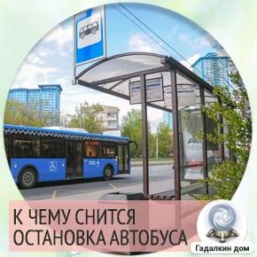сонник: автобусная остановка